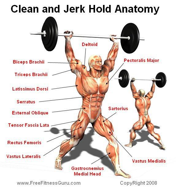 análisis de la arrancada y los grupos musculares que intervienen